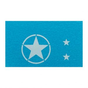 170 Ford US Army Military   US STARS