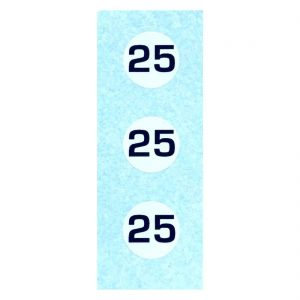 Dinky 111 Triumph TR2   Turquoise Racing Car Number 25 Waterslide Transfer